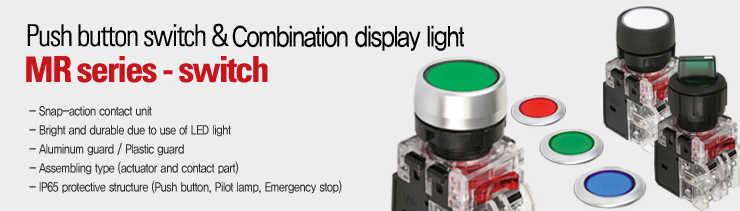 Push button switch & display light